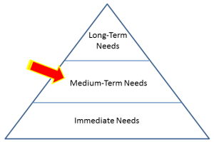 Spending for Survival - Medium-Term Needs