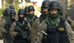 Militarized police, police state, police special forces
