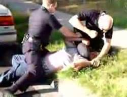 cops are herding dogs