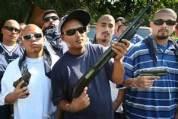 Predators gang members wolves
