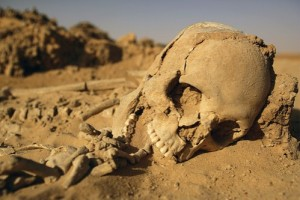 desert sun can kill you through dehydration or simply cooking you alive