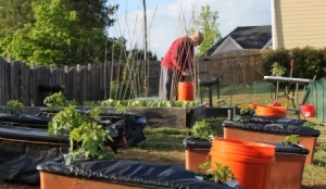 Gardening during grid-down emergencies disasters long-term food production