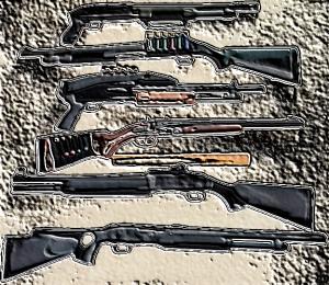 Choosing the right Shotgun