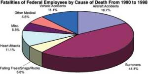 Wildland Firefighter Deaths Chart