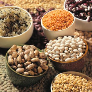 Food Storage Extenders - grains, beans, rice