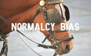 NormalcyBias-Horse