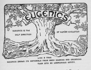 Eugenics explained tree
