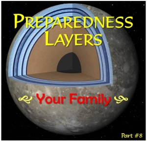 emergency Preparedness Layers summary