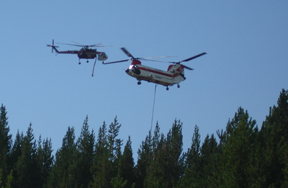 Helicopters Dipping out of river