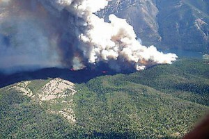 Forks of the Salmon Wildfire