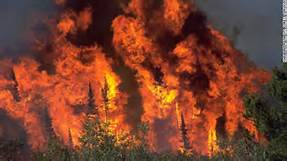 Wildfire-007