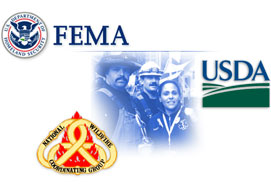 FEMA-ICS-002