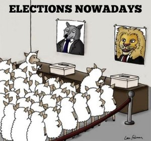 elections - predator guarding teh sheep