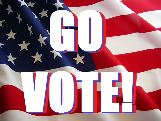You need to vote in every election!